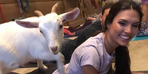 Carolina Goat Yoga Class: January 18th