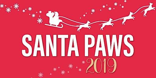 RSPCA Santa Paws Bundaberg