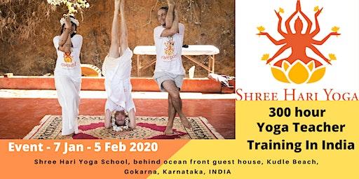 300 Hour Yoga Teacher Training Courses 2020