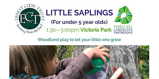 LITTLE SAPLINGS - Victoria Park, Nelson