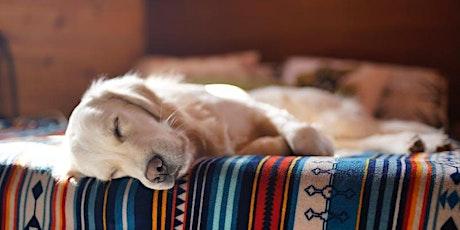 Secrets of Successful Sleep tickets