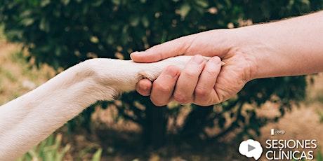 Proyecto GUAU:  inclusión de personas con terapia asistida con animales entradas