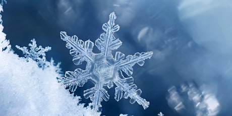 The Snow Flake Story / Wednesday STEM Lab (Grade 1 - Grade 12) tickets