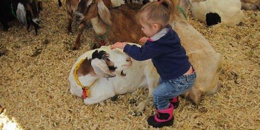 2020 Winter Farm Tour at Edgwick Farm