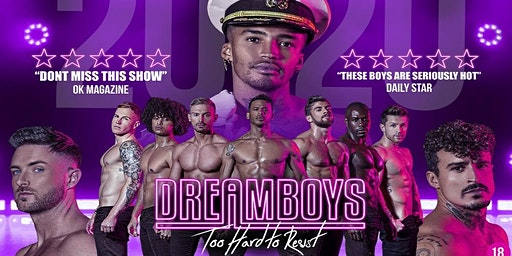 DREAMBOYS  - Too Hard to Resist