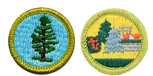 Boy Scout Merit Badge Event
