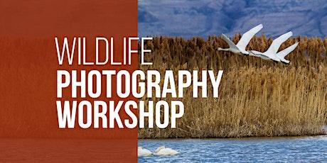 Wildlife Photography Workshop tickets