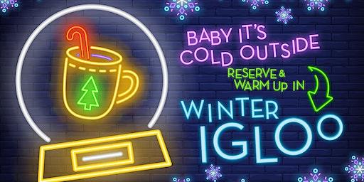 Winter Igloo: February 2020