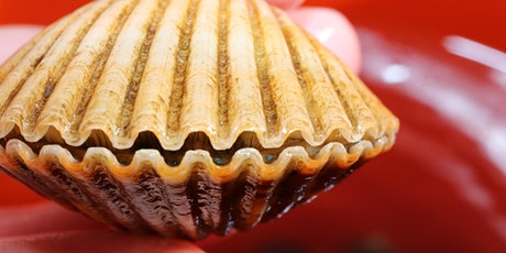 *Program Postponed* Franklin County Scallop Sitter Volunteer Workshop 2020 tickets