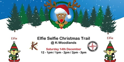 Elfie Selfie Christmas Trail @ K-Woodlands