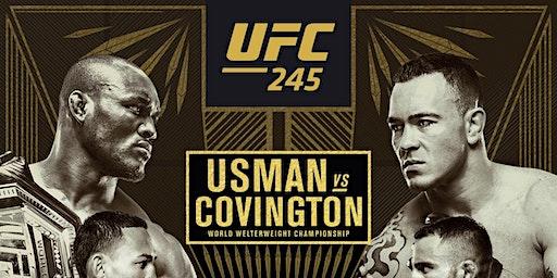 UFC Fight Night (245)