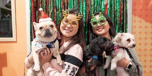 Holiday Yappy Hour at Holistic Hound