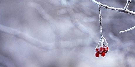 Conférence: Bien vivre l'hiver - Par l'Herbothèque billets