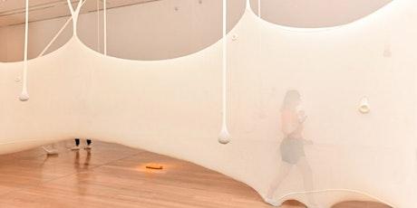 Curso Y la nave va: el avance del arte contemporáneo a través de la obra de Ernesto Neto, por Florencia Malbran entradas