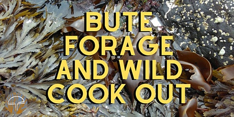 Bute - Forage and Wild Cook Out!  tickets