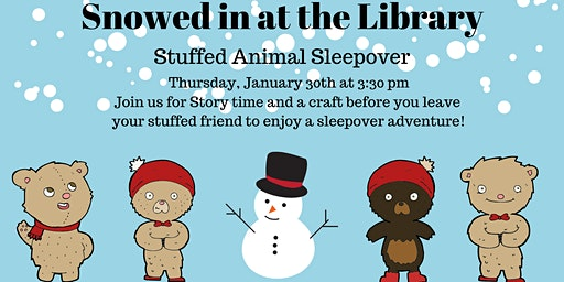 Snowed in at the Library: A Stuffed Animal Sleepover