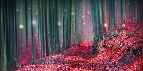 Starlight Guided Meditation with Reiki tickets
