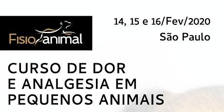IV Curso De Dor E Analgesia Em PEQUENOS ANIMAIS ingressos