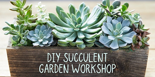 DIY Succulent Garden Workshop