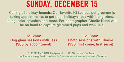 Not Your Standard: Holiday Pet Portraits