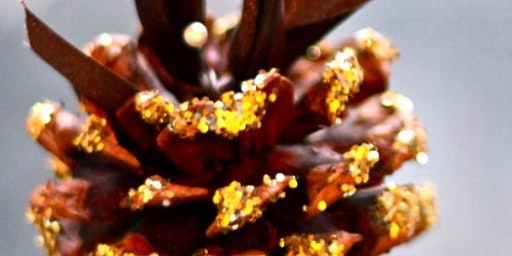Wild Woman New Moon Circle * Capricorn * DIY Shimmering Aromatic Pine Cones