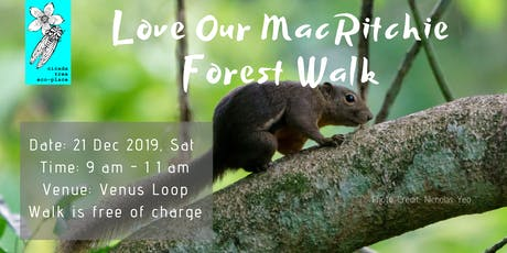 Love Our MacRitchie Forest walk tickets