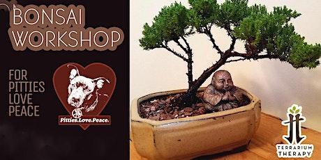 Bonsai Workshop for Pitties Love Peace tickets