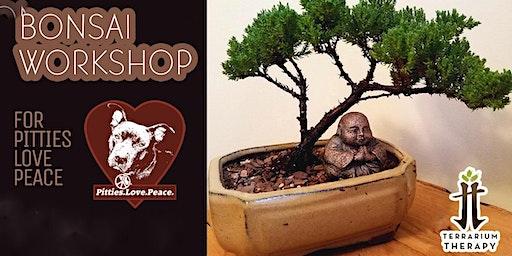 Bonsai Workshop for Pitties Love Peace