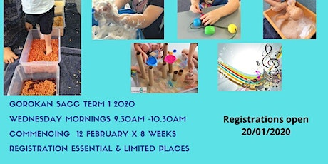 0-2 Baby & toddler Sensory Group  tickets