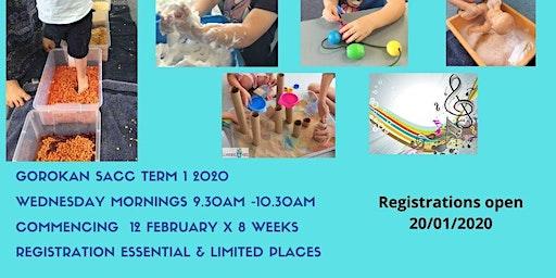 0-2 Baby & toddler Sensory Group