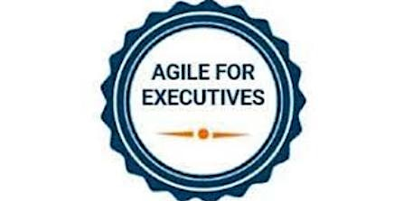 Agile For Executives 1 Day Virtual Live Training in Antwerp