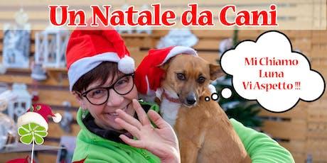 Un Natale da Cani 3 biglietti