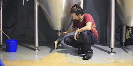 VISITA CASAZETA (Fábrica de cerveza) entradas