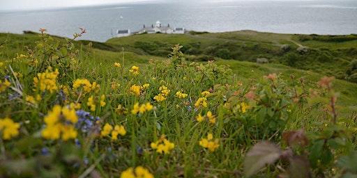 Dorset Nordic Walking Taster Session