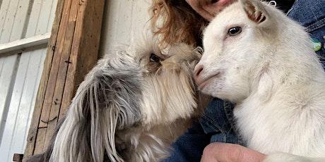 Farm Animal Encounter  tickets
