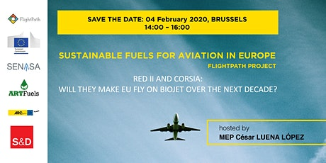 Debate on Sustainable Fuels for Aviation in Europe entradas