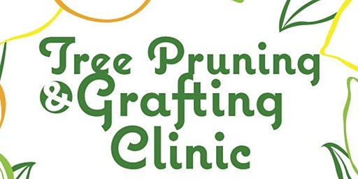 Tree Pruning & Grafting Clinic