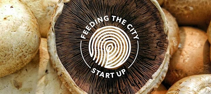 Feeding the City 2020 - Idea Generating Workshop - Edinburgh image