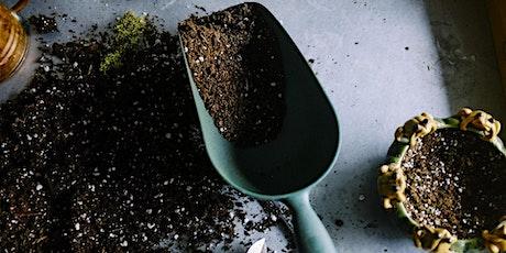 Jardinage écologique 3 : la préparation du sol billets