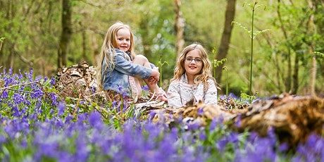 Bluebell Mini Photo Shoot with Summers Photography Bracknell Berkshire tickets