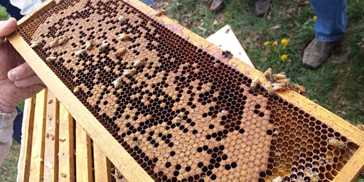 2020 Beekeeping Workshop #1: Package Installation
