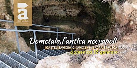 Dometaia, l'antica necropoli biglietti
