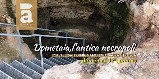 Dometaia, l'antica necropoli