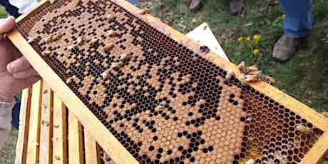 2020 Beekeeping Workshop #2: Spring Inspection tickets