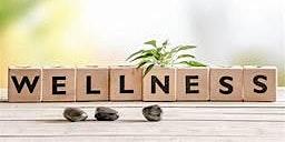 Wellness Support Workshop