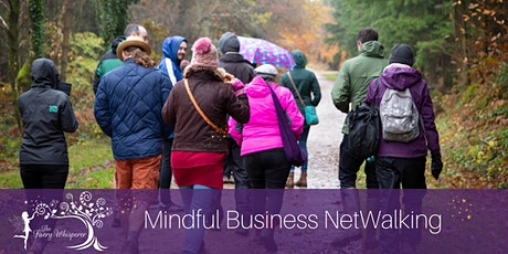 Mindful Netwalking at Stover Country Park, Near the A38 & Bovey Tracey tickets