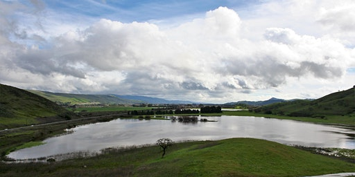 Stewardship Days at  North Coyote Valley Conservation Area