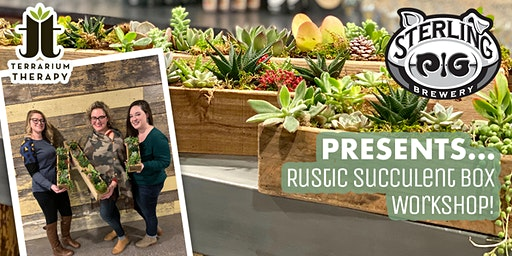 SOLD OUT- Rustic Succulent Box at Sterling Pig Brewery