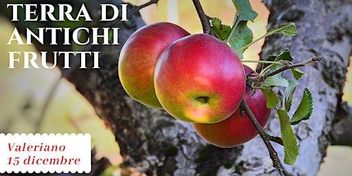 Terra di antichi frutti - Pinzano da scoprire