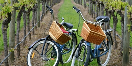 Private Guided Wine Cntry Bike Tour (Up to 7 people)  $759 in New York (LI) tickets